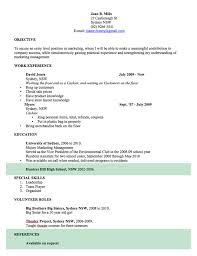 Microsoft Cv Template Professional Resume Template Cv Template Free Professional Resume