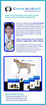 Canine Trigger Point Chart Canine Acutouch Instructional Workbook And Video
