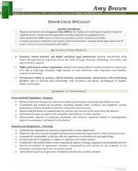 Litigation Paralegal Resume Template http www resumecareer