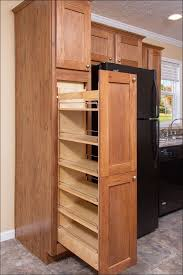 Full Size Of Kitchen:how To Stain Kitchen Cabinets Mobile Home Screen Door Mobile  Home ...