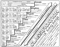Taxonomic Classification Science Doodle Notes Interactive