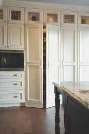 contemporary cabinet doors. Kitchen Cabinet Doors With Glass Beautiful Stunning Contemporary Door Ly Decoration Picture H
