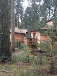 Famous Treehouse Accommodation Is Coming To Center Parcs Woburn Longleat Treehouse