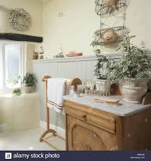 Grüne Pflanzen In Töpfen Auf Marmor Gekrönt Waschtisch Im Ferienhaus