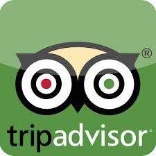 tripadvisor app logo. Plain Tripadvisor Tripadvisorapplogotripadvisoricon600600 On Tripadvisor App Logo Natur Garn Alpino