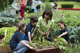 White House Kitchen Garden One Part Of The Obama White House That Will Endure Under Trump
