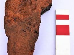 while excavating a highway in lincolnshire uk archaeologists found thousands of artifacts including tiles with dog cat and deer prints