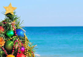 Dream Destination For Christmas  LolitalaneChristmas Tree Hawaii