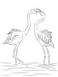 Small Picture Flamingos coloring pages Free Coloring Pages