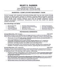 Jd Templates Sales Executive Job Description Template Cv Sample