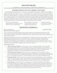 Sample Resume Business Process Analyst   Professional resumes     Naukri FastForward