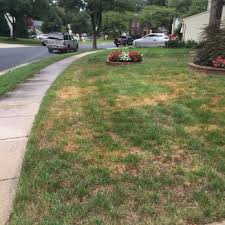 photo of trugreen lawn care gaithersburg md united states