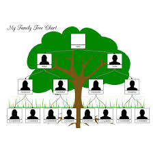 Family Tree Organizational Chart Template Family Tree Template Family Tree Template Pinterest