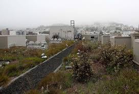 bill would encourage rooftop gardens on new sf buildings