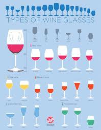 Types of Wine Glasses Infographic