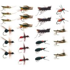 Fly Fishing Fly Identification Chart 75 Interpretive Fish Size Comparison Chart