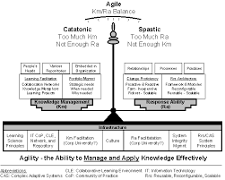 agility essay agility knowledge management response ability