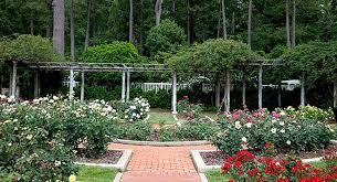 Small Picture Best Of Designs For Small Gardens Ideas Small Rose Garden Design