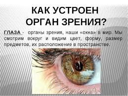 Презентация по окружающему миру на тему Зрение класс ГЛАЗА органы зрения наши окна в мир