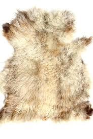 hide rug reindeer care