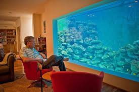 6 Man Builds An Aquarium In His House Where Not Only Fish Can Swim