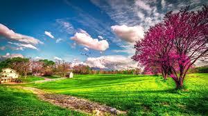 Landscape beautiful spring nature ...