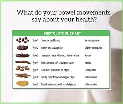 Bristol Stool Chart Pdf What Does Your Poo Say About You Bad Digestion