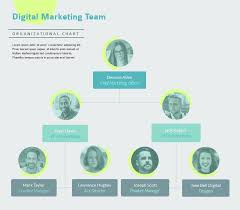 Team Chart Template Digital Marketing Team Organizational Chart Template Visme