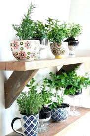 hanging herb planter hanging herb pots windowsill herb planter medium size of herb garden kit indoor