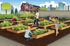 urban gardening ideas that make sense