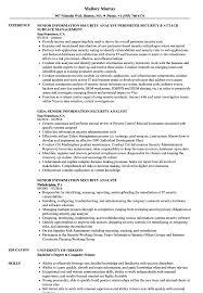 Senior Information Security Analyst Resume Samples Velvet Jobs