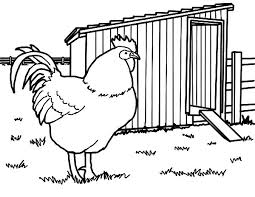Small Picture Rhode Island Rooster Chicken Coop Coloring Pages NetArt