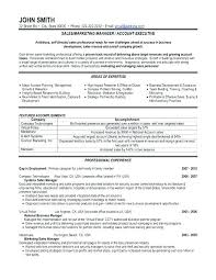 Plain Text Resume Sample High Impact Resume Samples Plain Text Resume Sample Marketing Resume