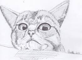 Gatti Disegnati E Colorati Coloradisegni
