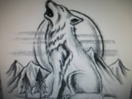 baby wolf howling drawing. Beautiful Wolf Baby Wolf Howling Drawing  Top Pictures Gallery Online And G