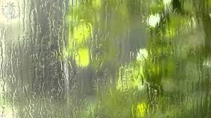 Rain Glass Window  distant thunder ambience & heavy rain sound against a window 8 6681 by xevi.us