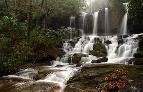 Image result for South Carolina photos