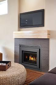 regency e18 gas fireplace insert