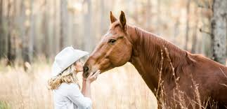 What is Horse Photography
