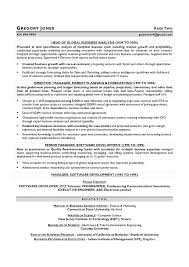 Cfo Resume Template Custom CFO Sample Resume Executive Writer Chicago Houston San Shalomhouseus