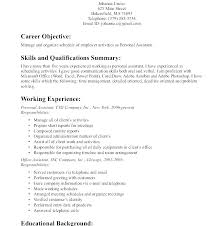 Profile Example On Resume Simple Resume Format