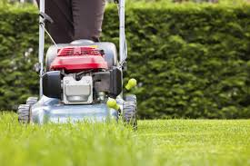 Budget Lawn Care 10 Tips For Budget Friendly Lawn Care Wtop