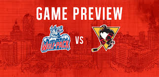 game preview penguins png