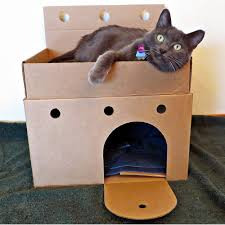 Cardboard House For Cats Better Than A Box How About A Cardboard Cat Castle Life With Cats