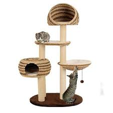 cat gyms for sale. Plain Sale Purrshire Banana Leaf Deluxe Cat Tree In Gyms For Sale D