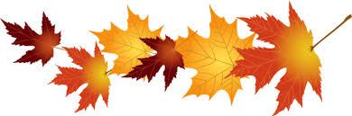 Výsledek obrázku pro осенние листья