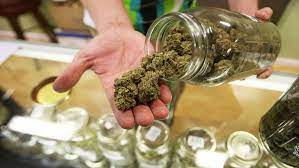 Could marijuana legalization lead to more substance addiction? |  RochesterFirst