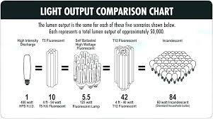 T8 Fluorescent Lumens Chart T8 Bulb Lumens Girlify