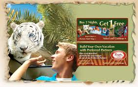 busch gardens tampa vacation packages. busch gardens tampa vacation packages h