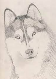 simple dog drawings in pencil. Plain Simple Go Back Images For Simple Dog Drawings In Pencil  Litle Pups And T